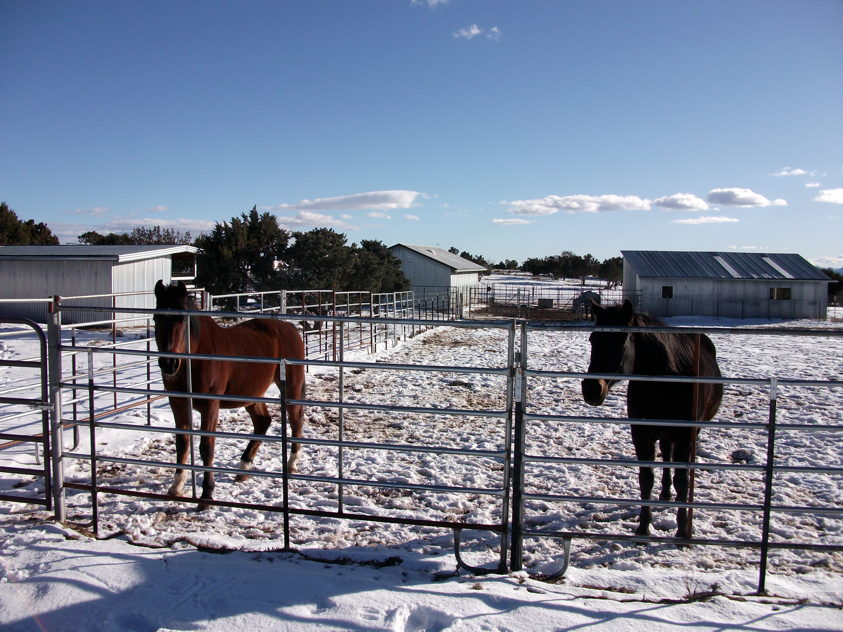 Winter at the Ranch. photos by George Johnson